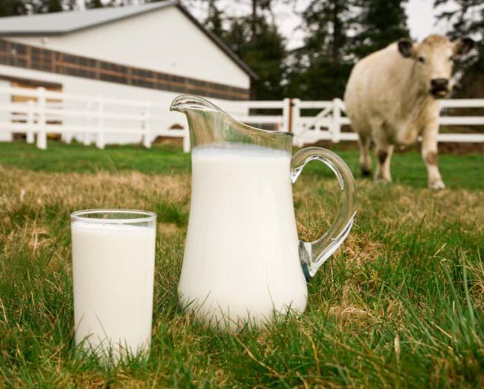 молоко 2