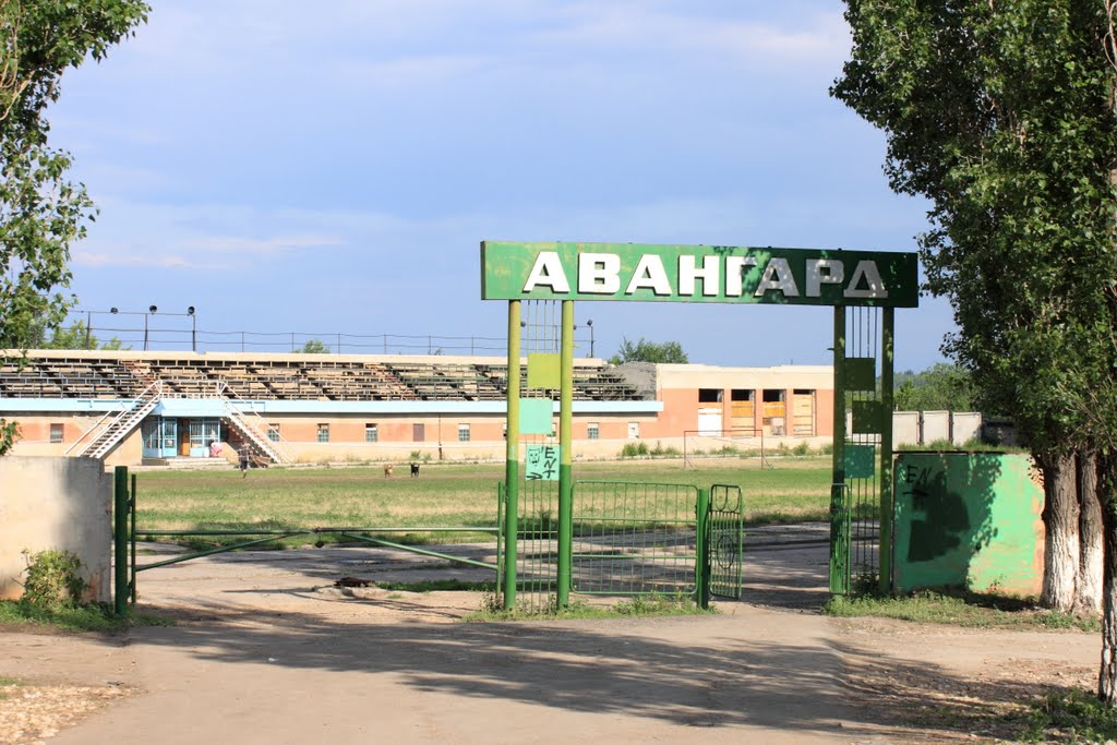 Картинки по запросу авангард саратов стадион