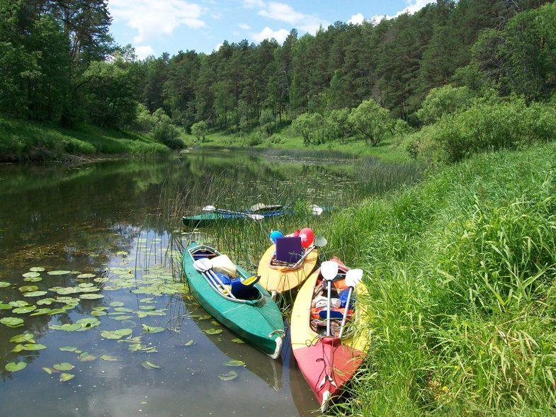Новый саратовский турпортал подберет маршрут для сплава и забронирует место в сельской усадьбе