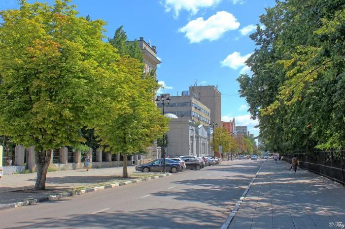 Первые финансовые потери от новой пешеходной зоны в Саратове понесет бизнес