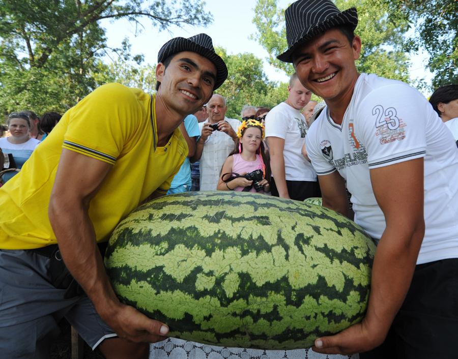 «Золотой арбуз» и «Золотой початок»: в Саратове наградят самых отличившихся аграриев