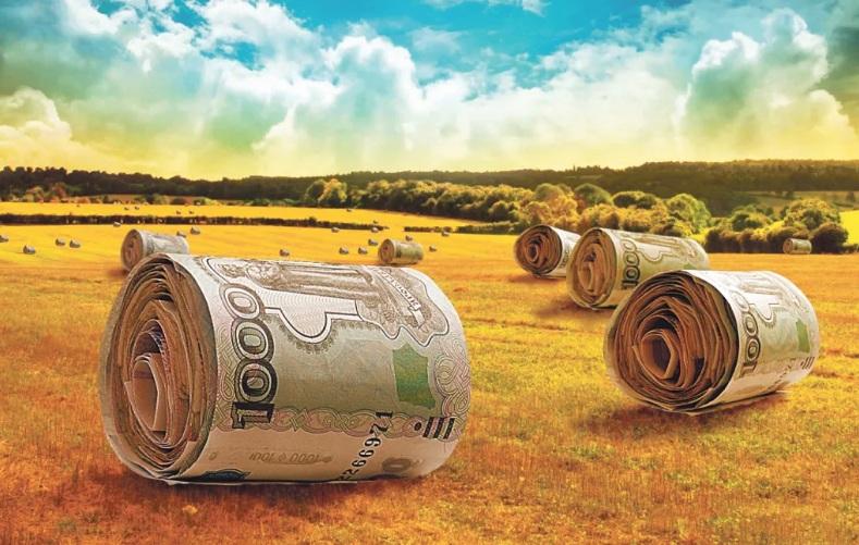 Ценность саратовских земель «Ростагро» будет поднимать выходец из «Солнечных продуктов»