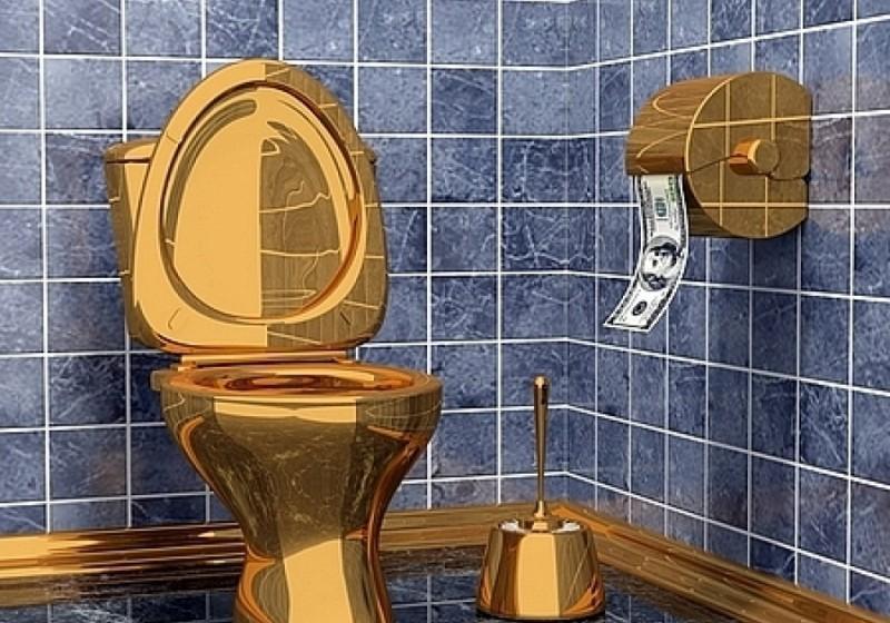"""От дизайнера VIP-зала нового саратовского аэропорта """"Ренова"""" ждет объемную модель туалета"""
