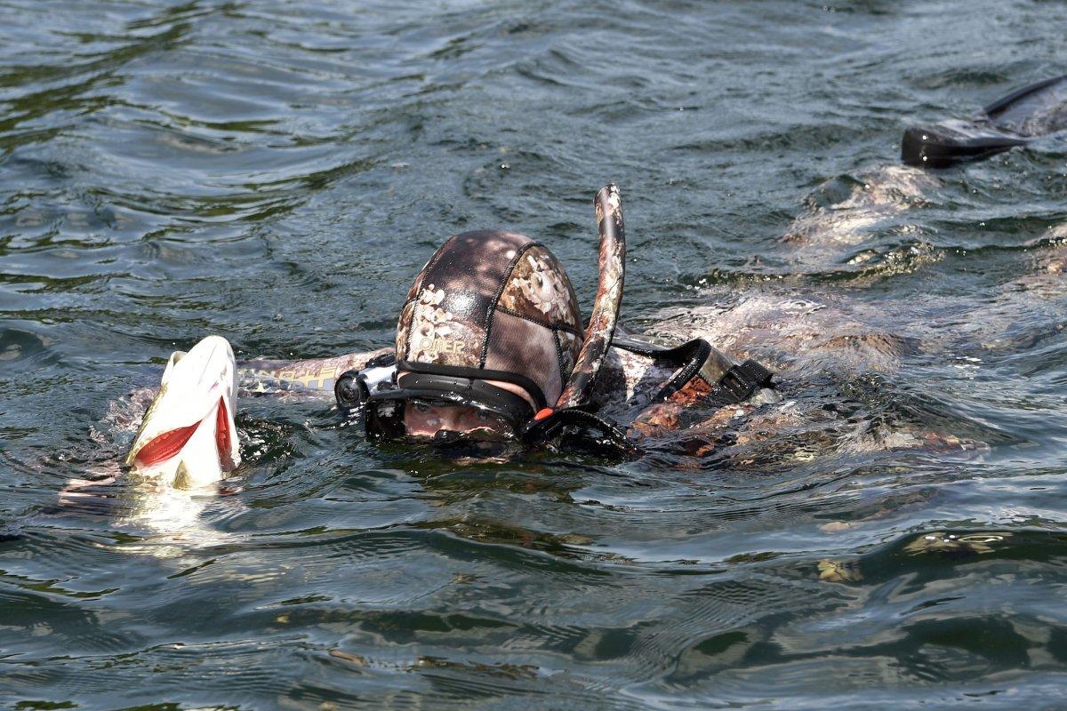 где ловят рыбу в петрозаводске