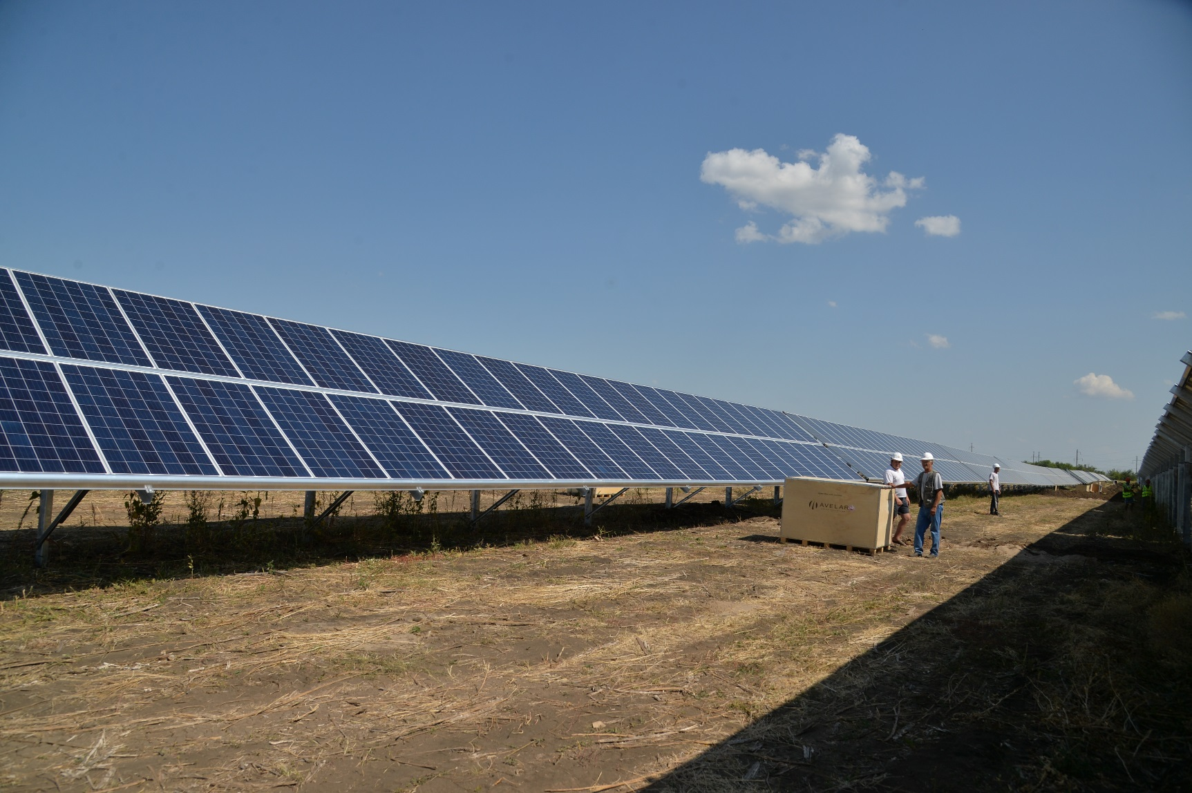 ВСаратовской области запущена первая врегионе солнечная электростанция