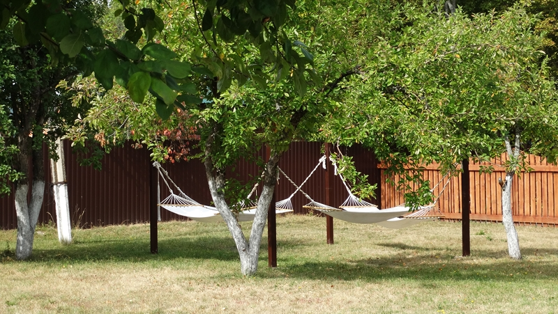 Бизнес на тишине: в «Серебряном бору» под Базарным Карабулаком можно играть свадьбы, рыбачить и валяться в гамаках
