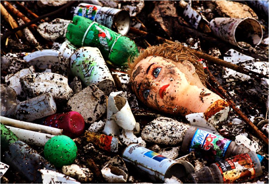 Саратовские «фронтовики» отправили новые разоблачения мусорной реформы от Натальи Караман в столичный главк ОНФ
