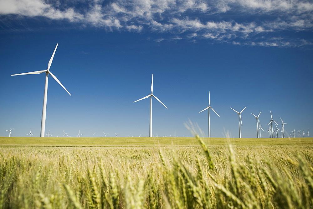 Миллиарды на ветер: подписано соглашение о строительстве первого саратовского ветропарка