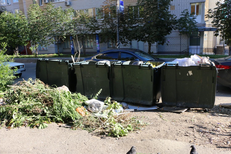 Саратовское минприроды потратит 9 млн бюджетных рублей, чтобы пересчитать в регионе все мусорные баки