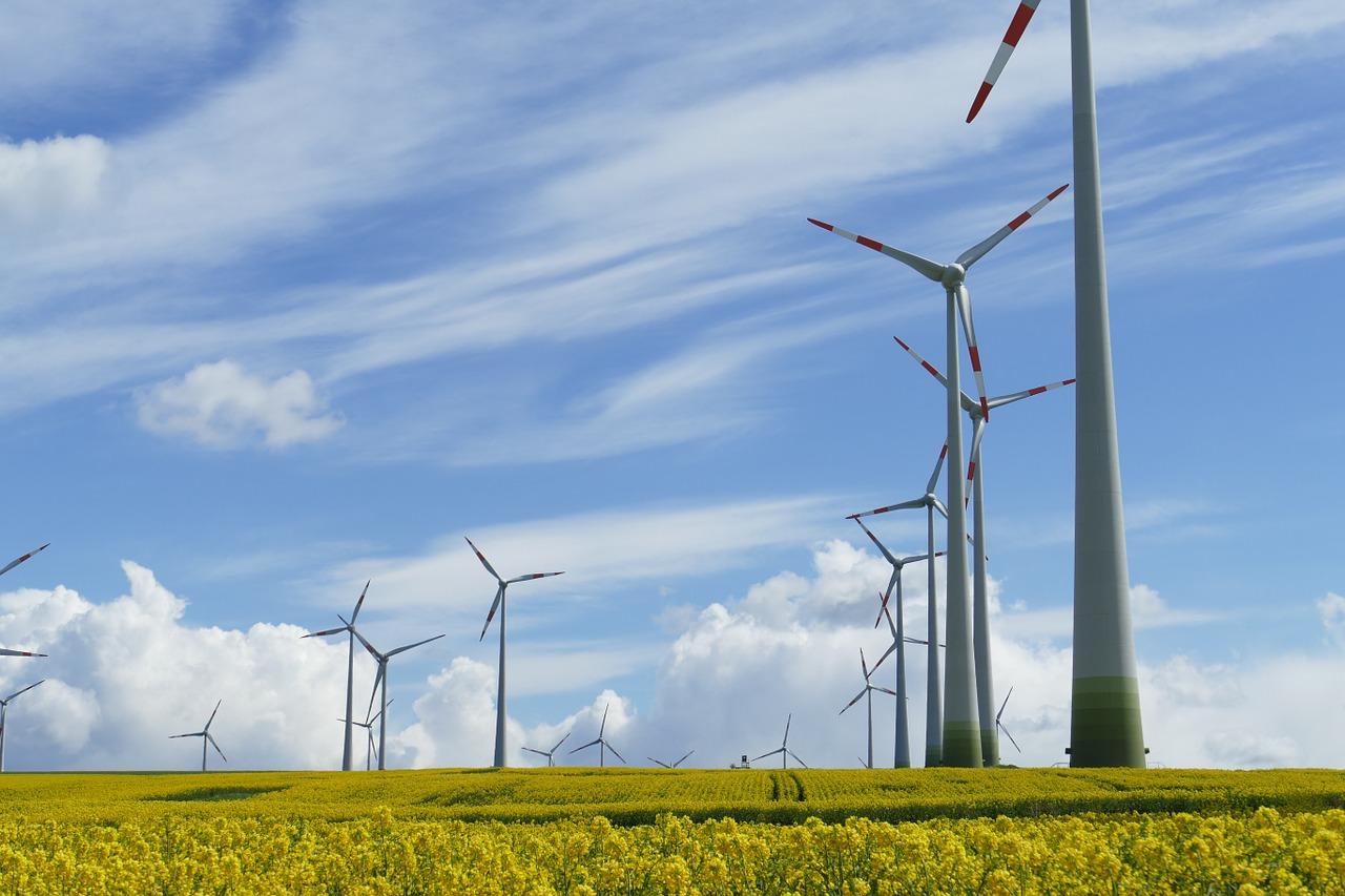 «Фортум» ищет для первого саратовского ветропарка квалифицированного проектировщика