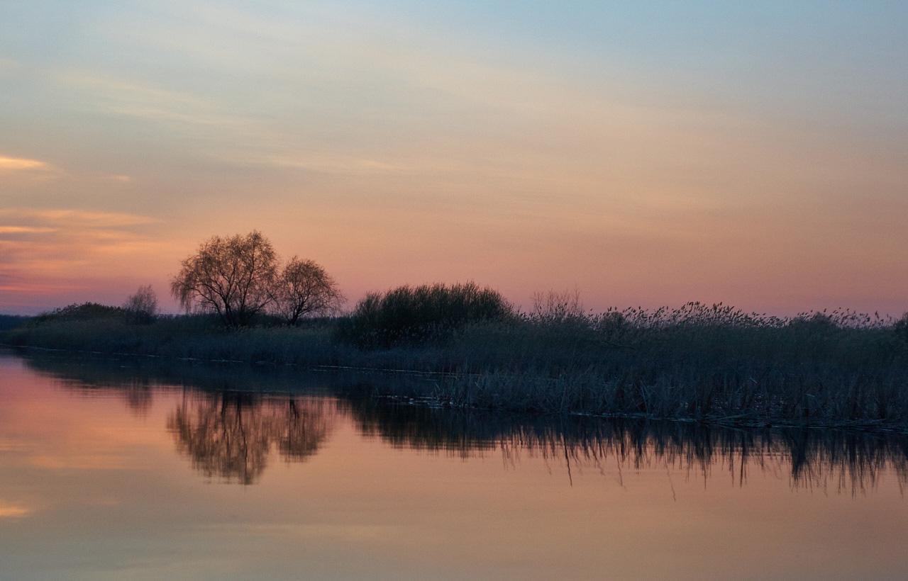 Черные воды: территория «Караманского сада» снова вакантна для желающих организовать охоту