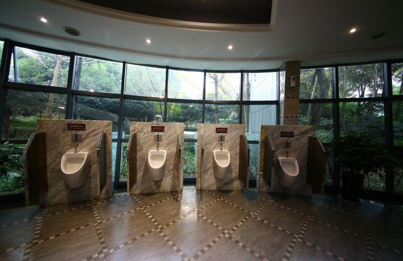 tualet-13