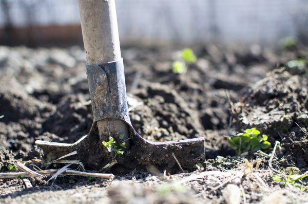 Что нарыли-то? Схему изменения вида использования земли в Саратове все считали законной еще 6 лет назад