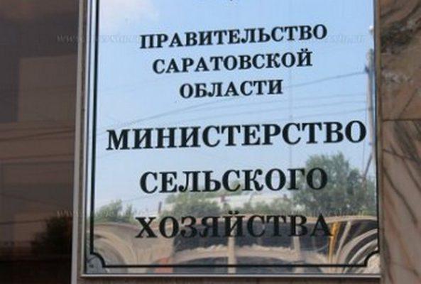 План по уголовным делам: саратовский юрист о задержании замминистра сельского хозяйства области